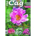 Журнал «Нескучный сад». Сентябрь 2008