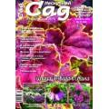 Журнал «Нескучный сад». Ноябрь 2008