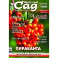 Журнал «Нескучный сад». Ноябрь 2009