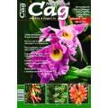 Журнал «Нескучный сад». Декабрь 2007