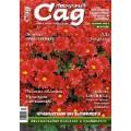 Журнал «Нескучный сад». Октябрь 2012