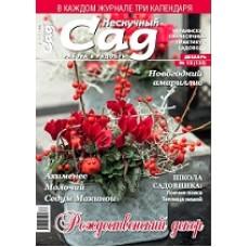 Журнал «Нескучный сад». Декабрь 2017