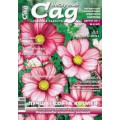 Журнал «Нескучный сад». Август 2011