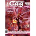 Журнал «Нескучный сад». Сентябрь 2011